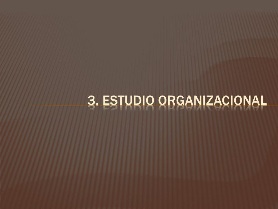 3. ESTUDIO ORGANIZACIONAL