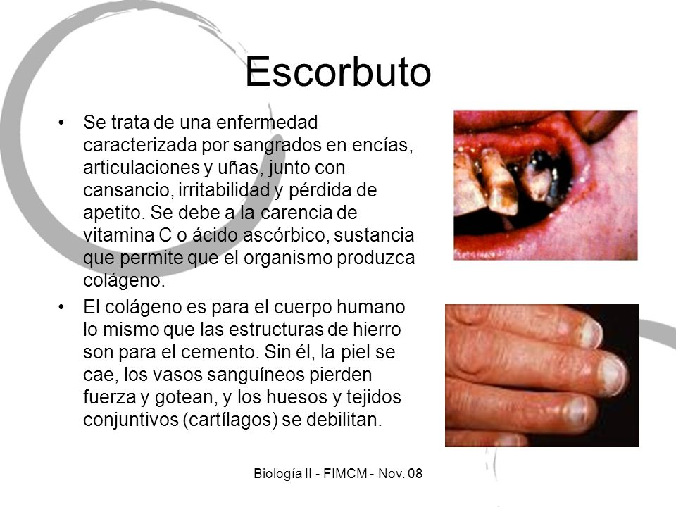 Biología II - FIMCM - Nov. 08