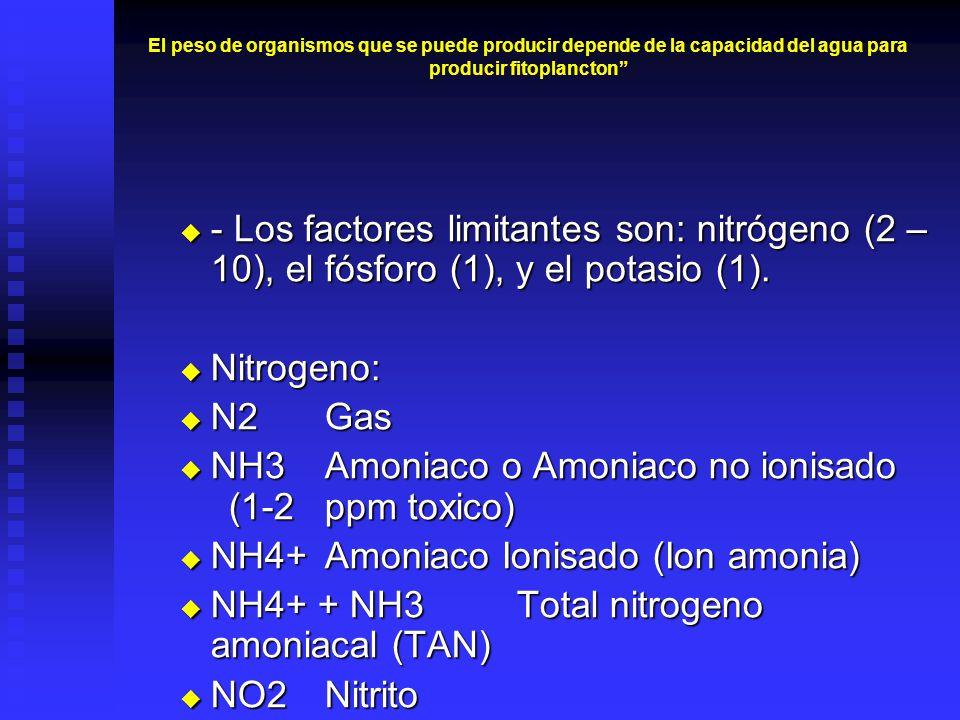 NH3 Amoniaco o Amoniaco no ionisado (1-2 ppm toxico)