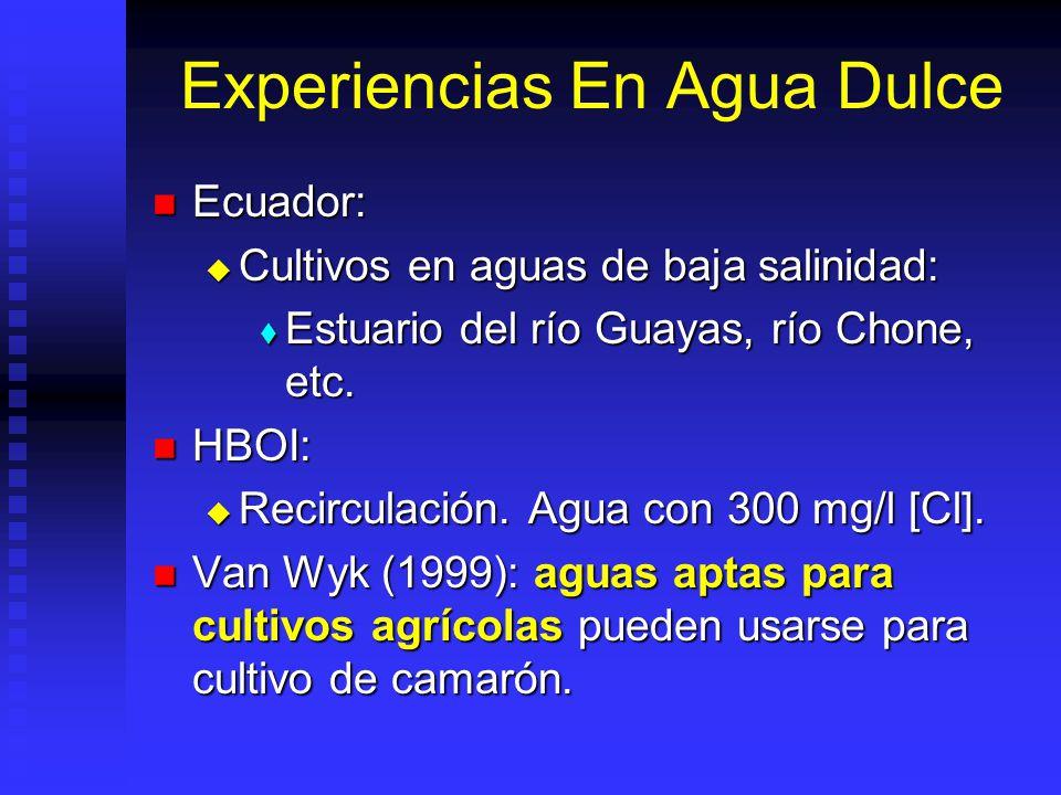 Experiencias En Agua Dulce
