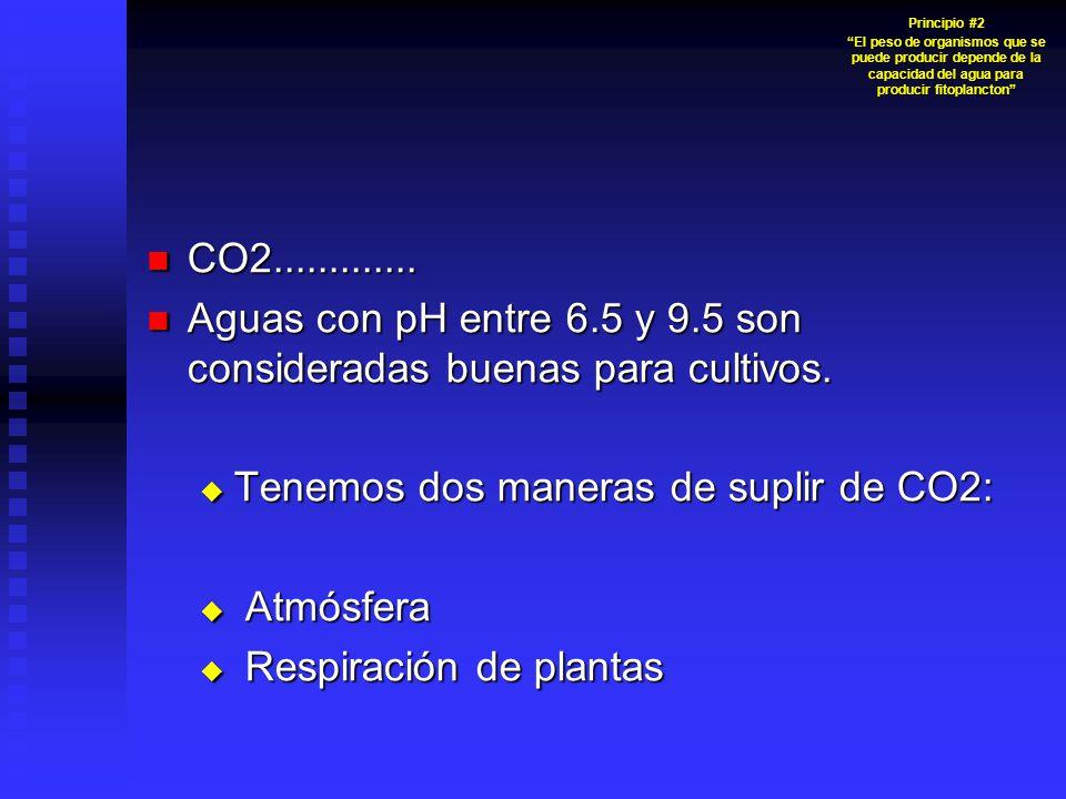 Aguas con pH entre 6.5 y 9.5 son consideradas buenas para cultivos.