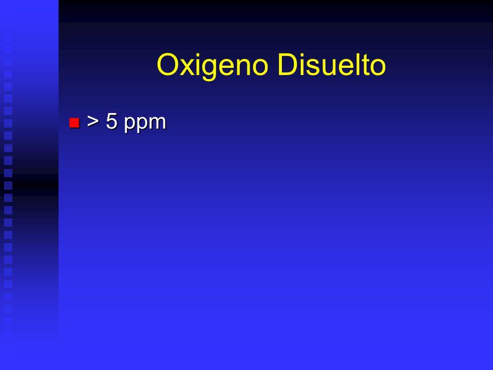 Oxigeno Disuelto > 5 ppm