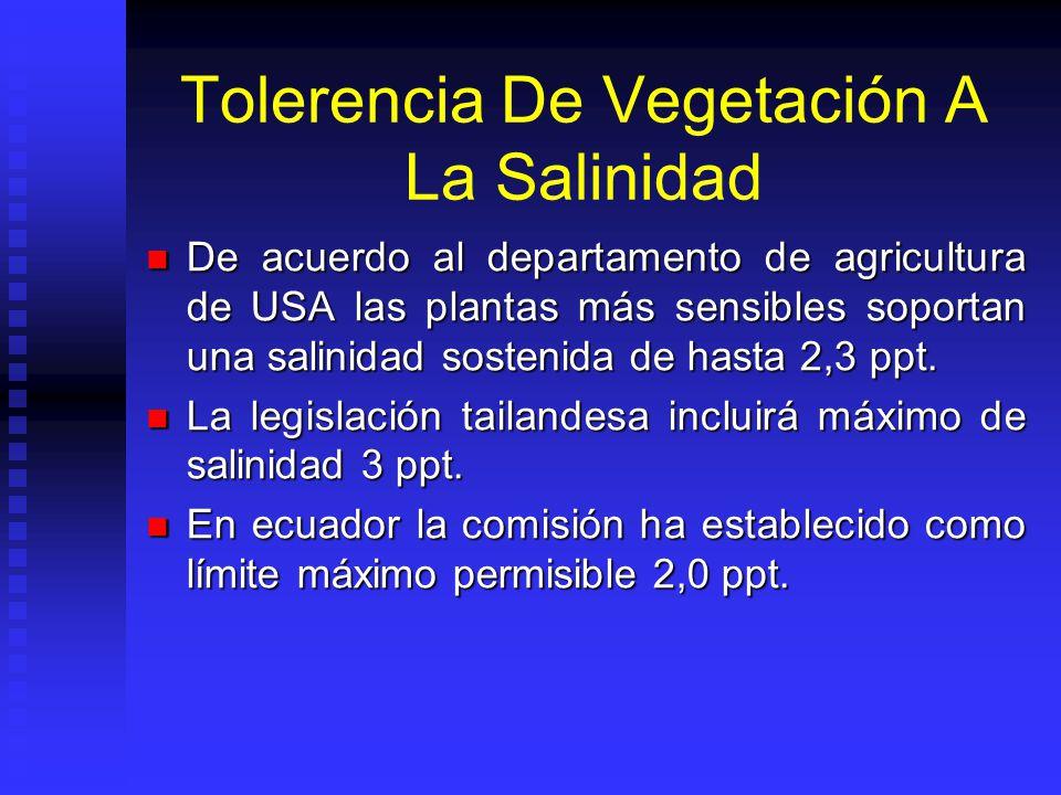Tolerencia De Vegetación A La Salinidad