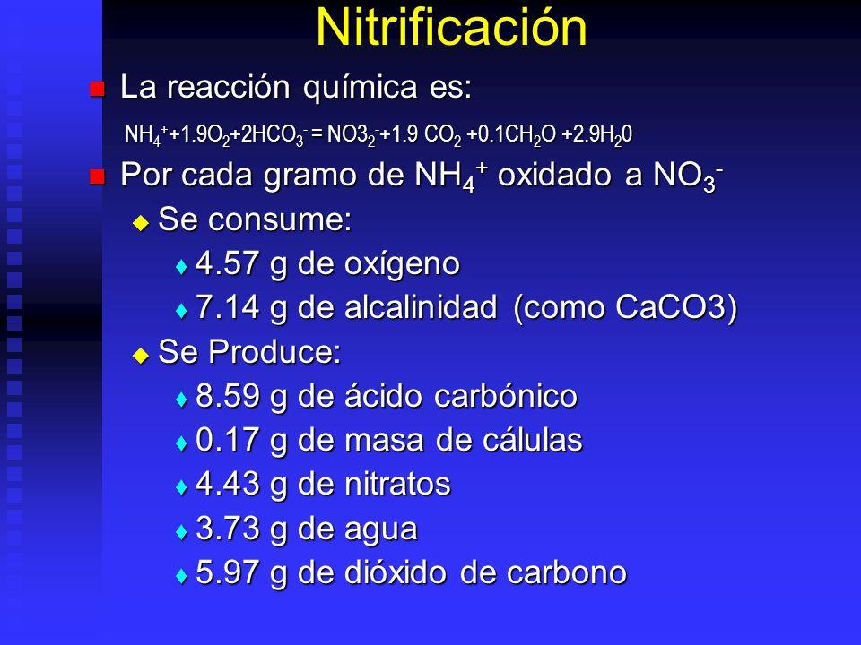 Nitrificación La reacción química es: