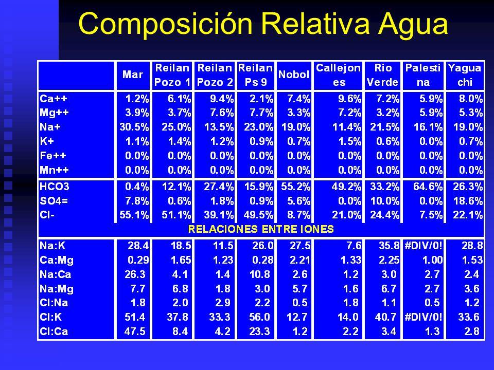 Composición Relativa Agua