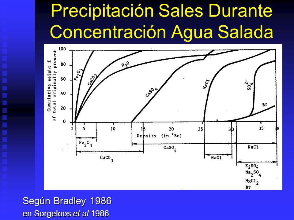 Precipitación Sales Durante Concentración Agua Salada