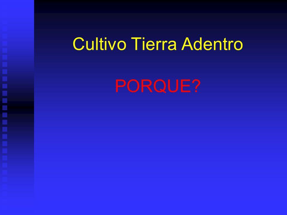 Cultivo Tierra Adentro PORQUE