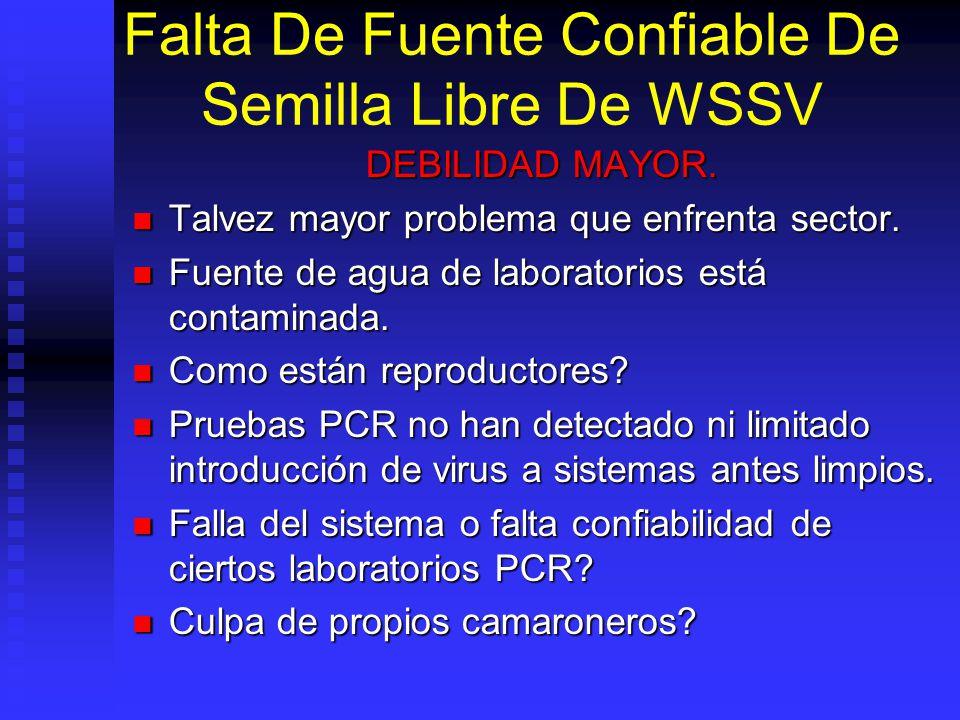 Falta De Fuente Confiable De Semilla Libre De WSSV