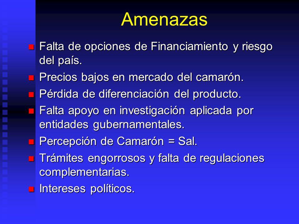 Amenazas Falta de opciones de Financiamiento y riesgo del país.
