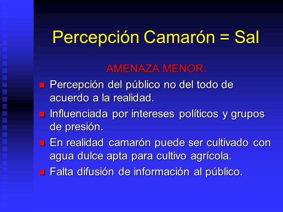 Percepción Camarón = Sal