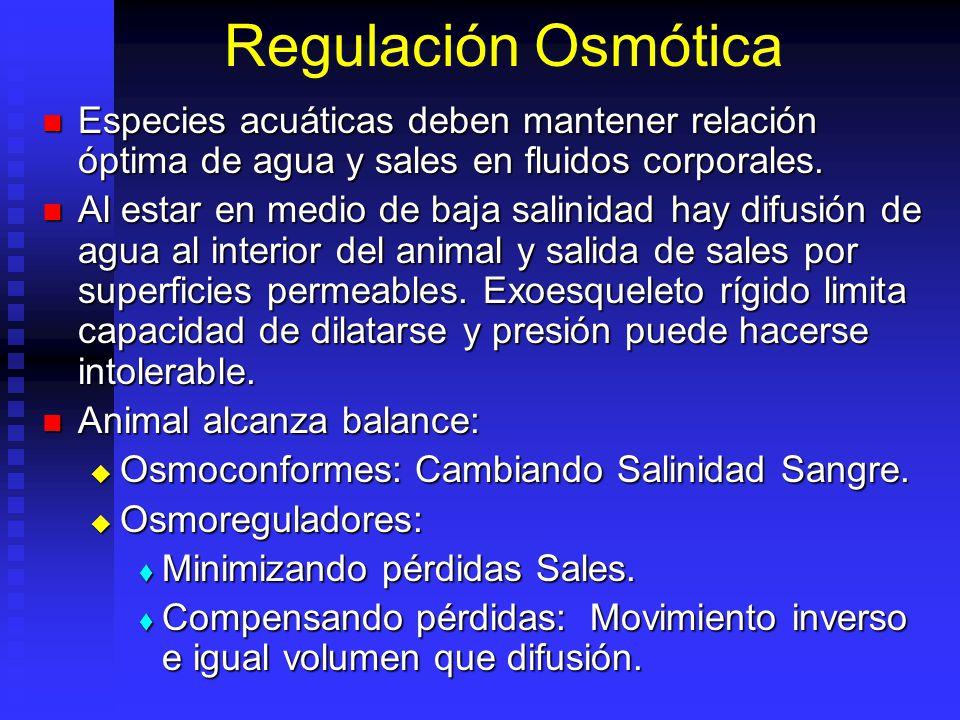 Regulación Osmótica Especies acuáticas deben mantener relación óptima de agua y sales en fluidos corporales.
