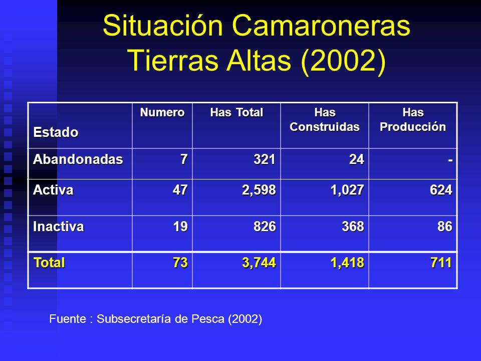 Situación Camaroneras Tierras Altas (2002)