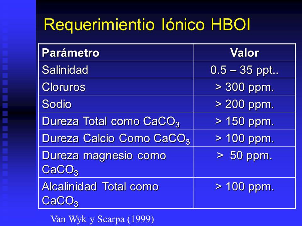 Requerimientio Iónico HBOI
