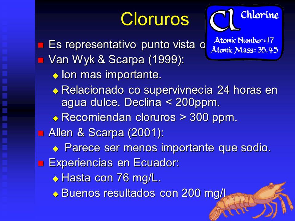 Cloruros Es representativo punto vista oceanografico