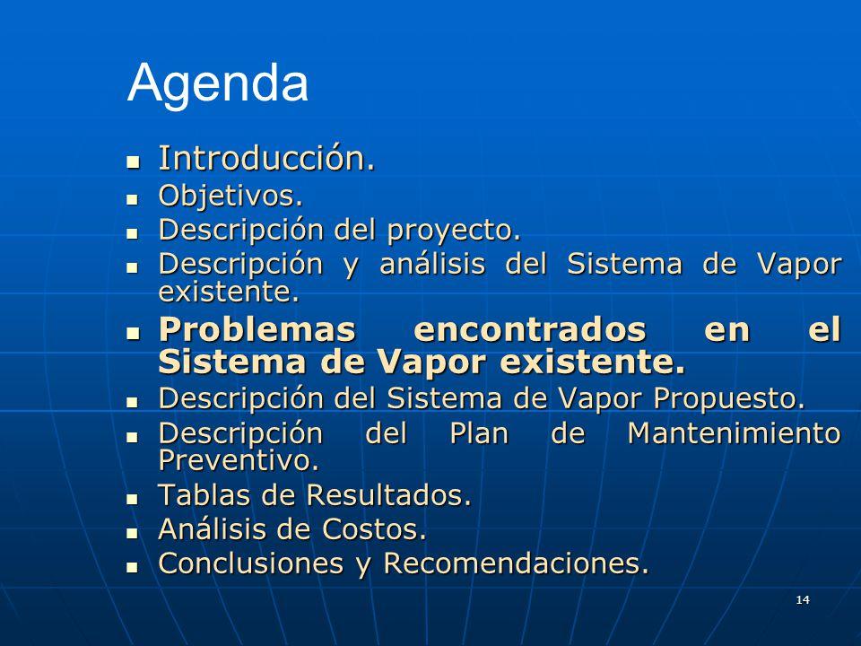 Agenda Introducción. Objetivos. Descripción del proyecto. Descripción y análisis del Sistema de Vapor existente.