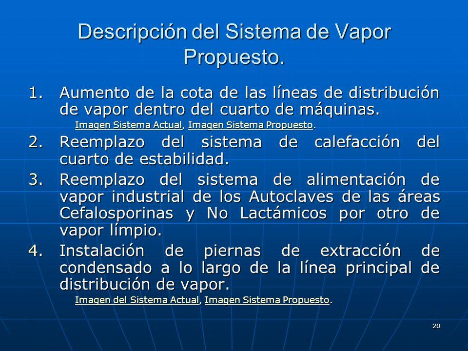 Descripción del Sistema de Vapor Propuesto.