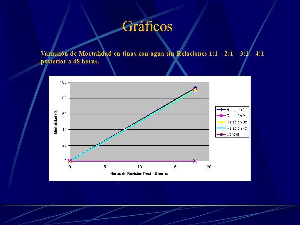 Gráficos Variación de Mortalidad en tinas con agua sin Relaciones 1:1 - 2:1 - 3:1 - 4:1 posterior a 48 horas.