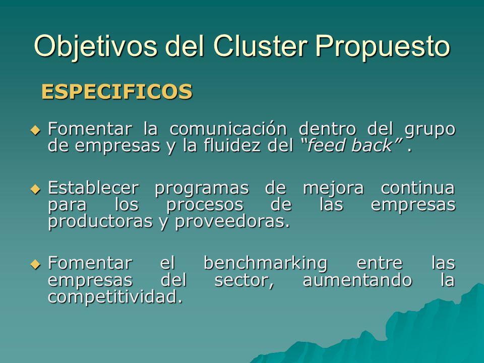 Objetivos del Cluster Propuesto