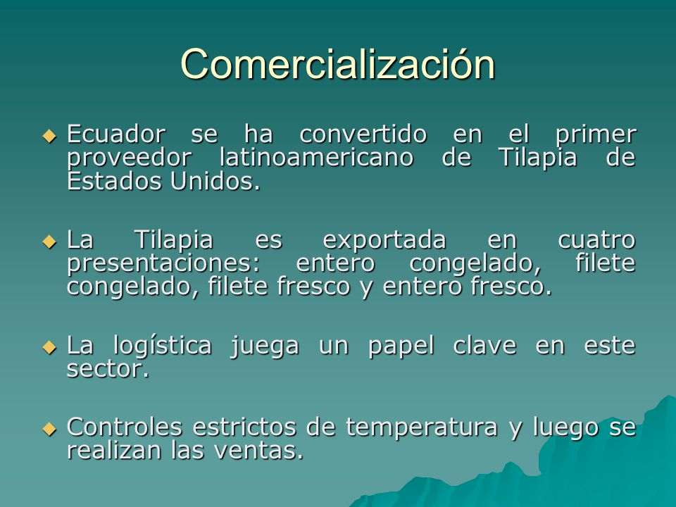 Comercialización Ecuador se ha convertido en el primer proveedor latinoamericano de Tilapia de Estados Unidos.
