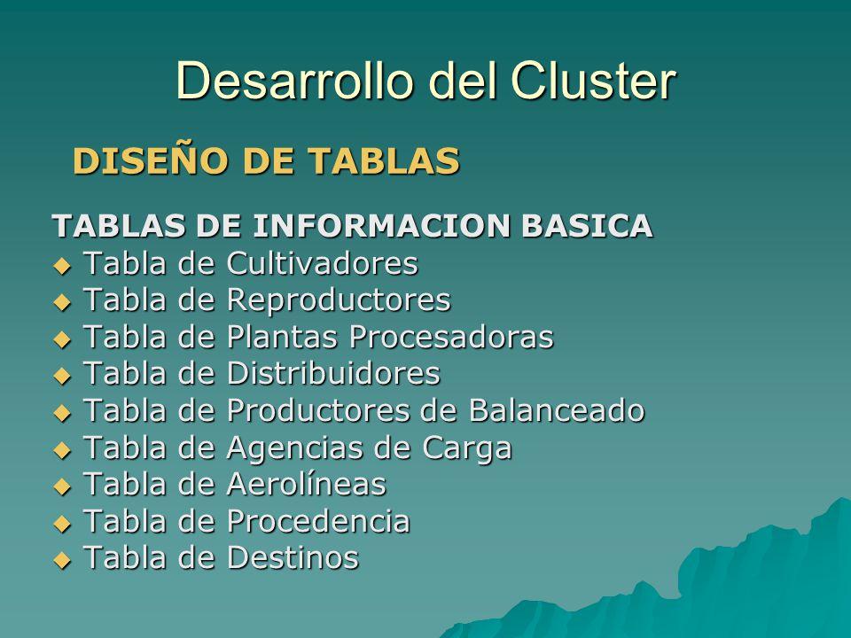 Desarrollo del Cluster