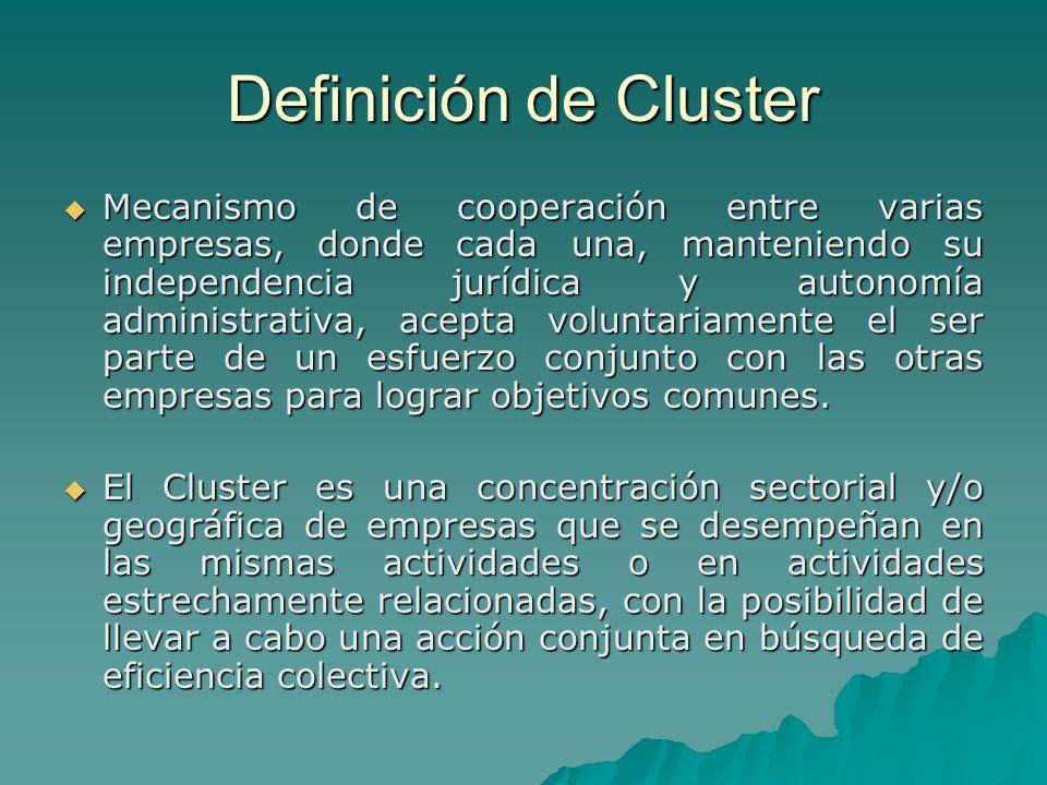 Definición de Cluster