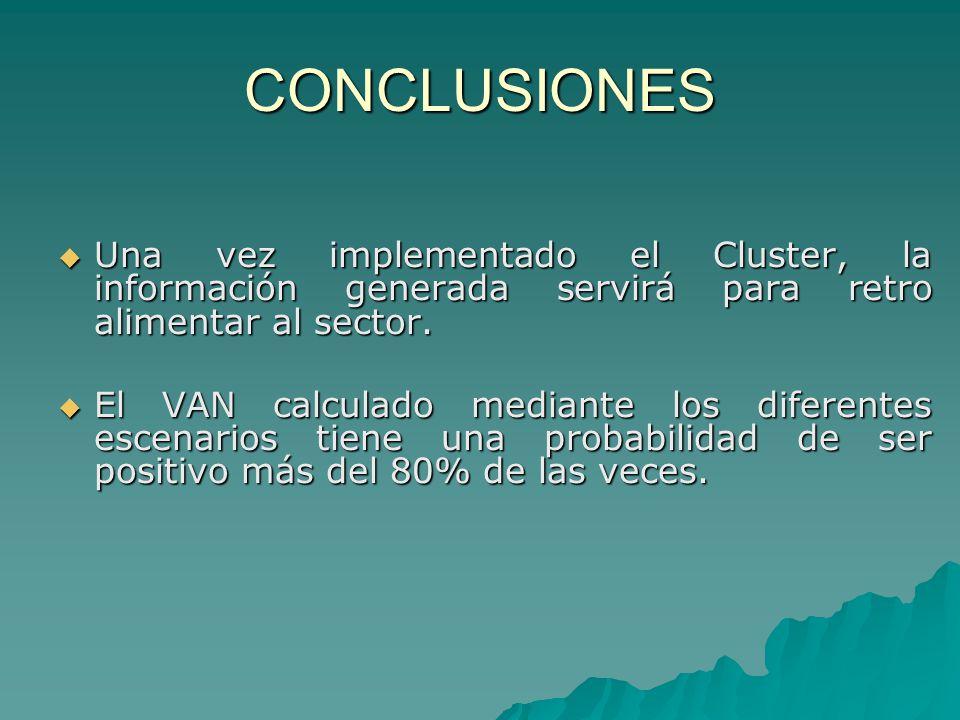 CONCLUSIONES Una vez implementado el Cluster, la información generada servirá para retro alimentar al sector.