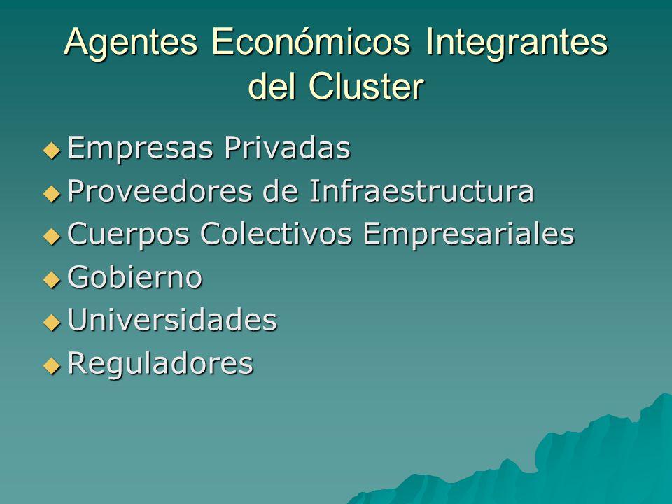 Agentes Económicos Integrantes del Cluster