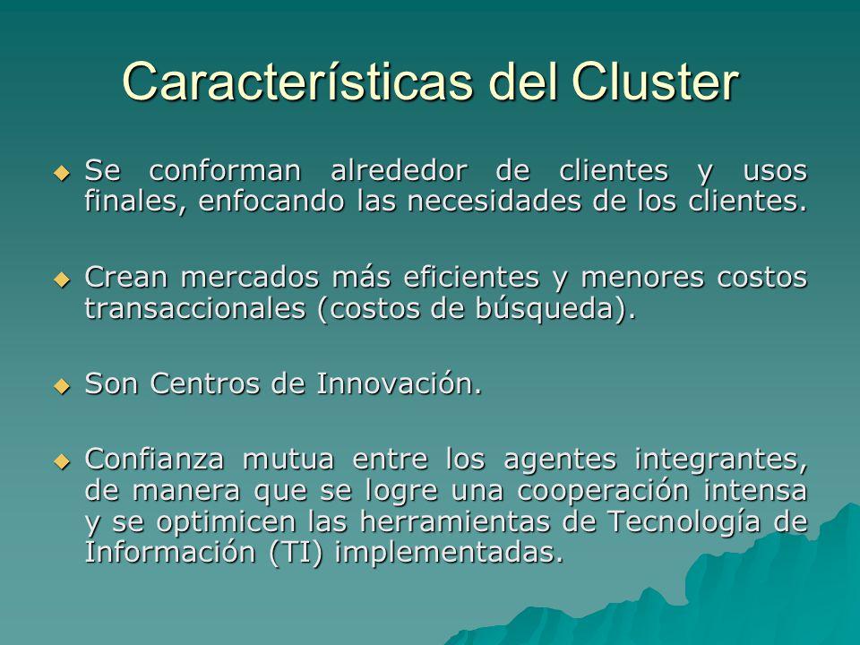 Características del Cluster