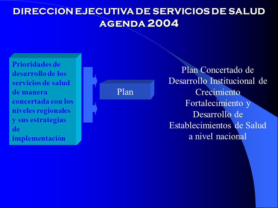 DIRECCION EJECUTIVA DE SERVICIOS DE SALUD agenda 2004
