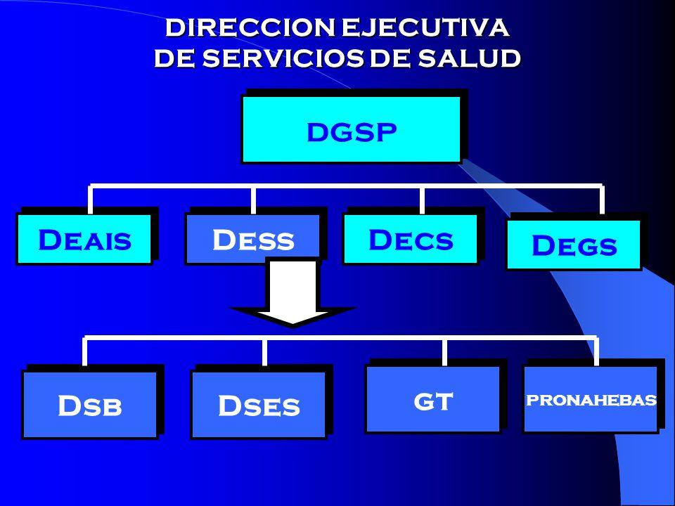 DIRECCION EJECUTIVA DE SERVICIOS DE SALUD
