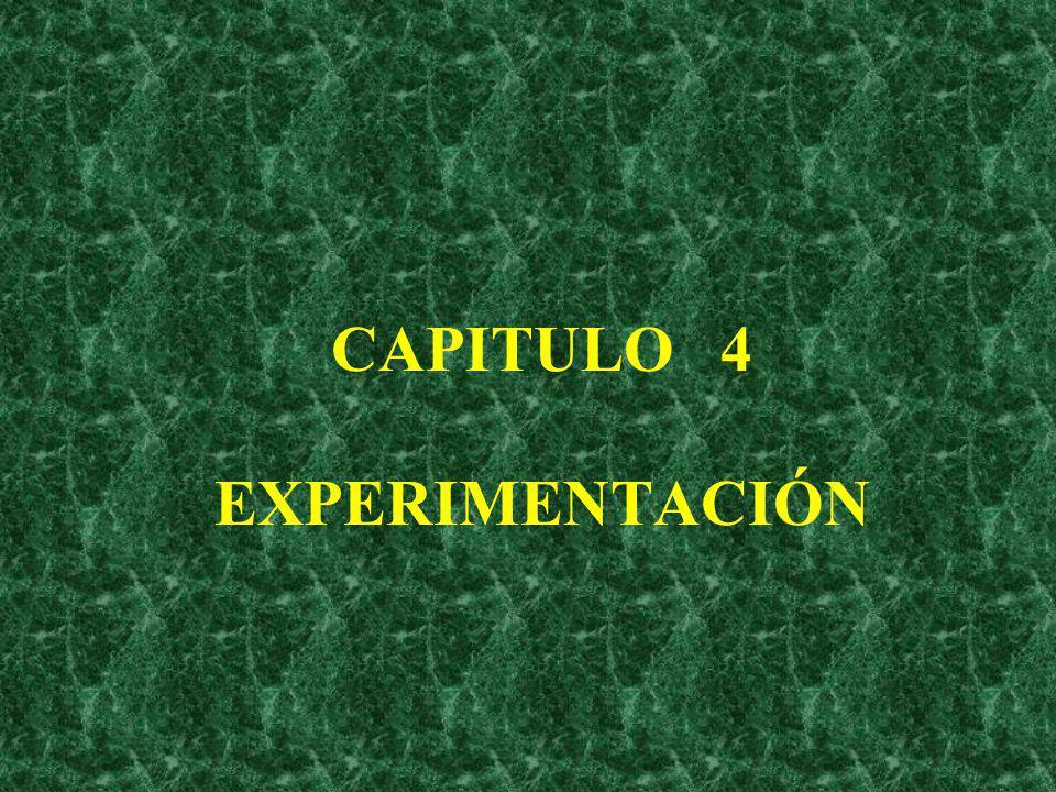 CAPITULO 4 EXPERIMENTACIÓN