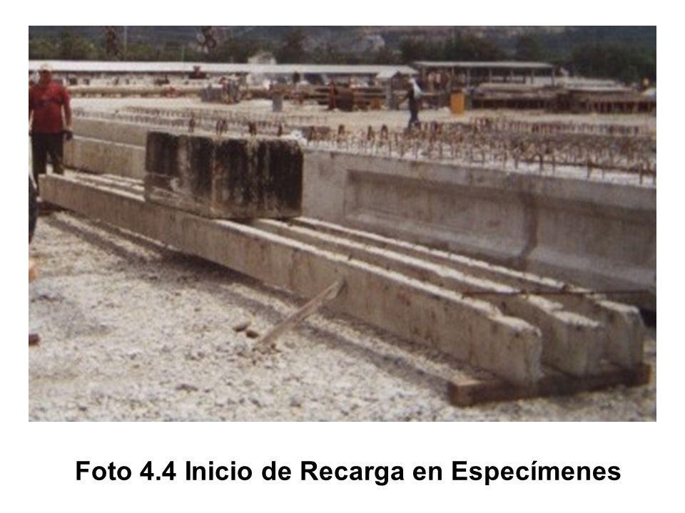 Foto 4.4 Inicio de Recarga en Especímenes