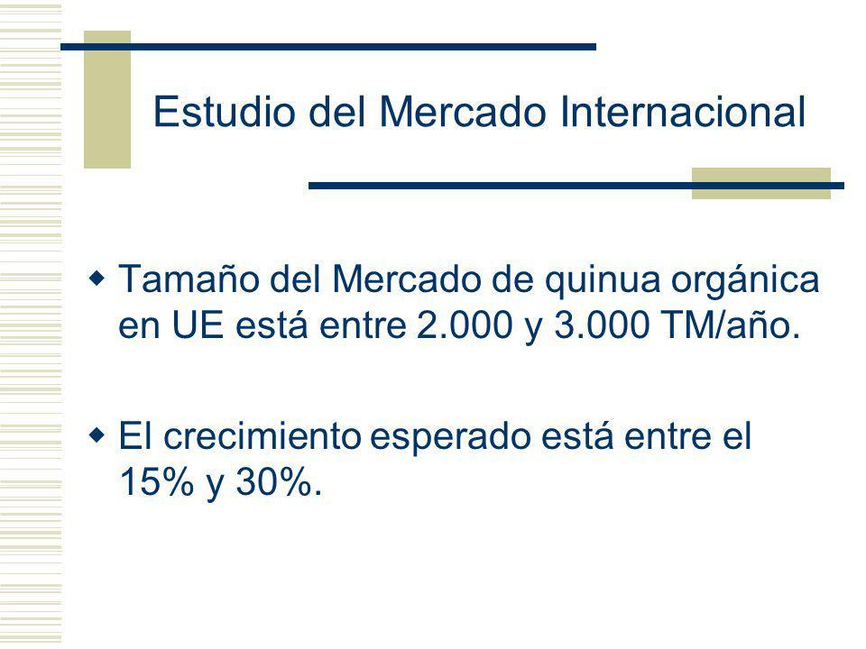 Estudio del Mercado Internacional