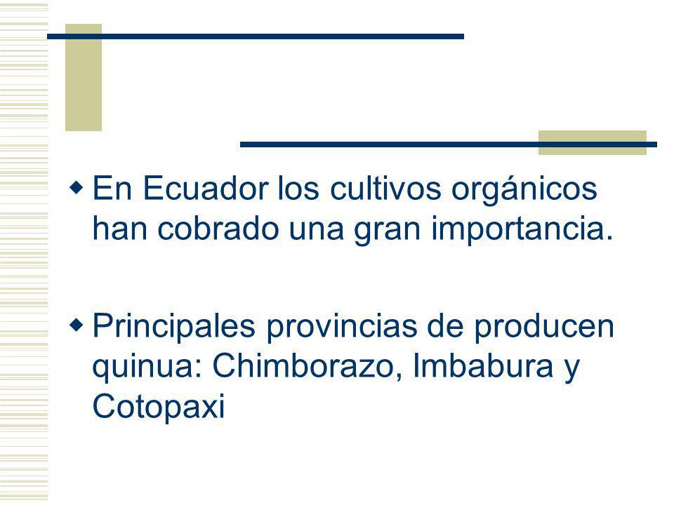 En Ecuador los cultivos orgánicos han cobrado una gran importancia.