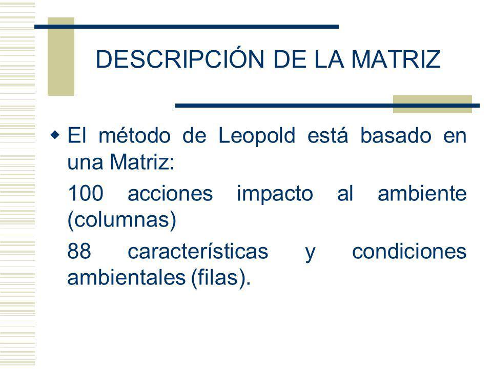 DESCRIPCIÓN DE LA MATRIZ