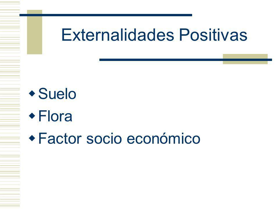 Externalidades Positivas