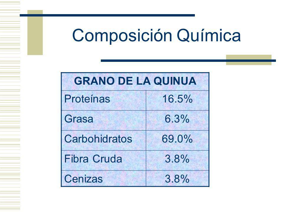 Composición Química GRANO DE LA QUINUA Proteínas 16.5% Grasa 6.3%
