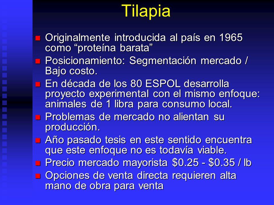 Tilapia Originalmente introducida al país en 1965 como proteína barata Posicionamiento: Segmentación mercado / Bajo costo.