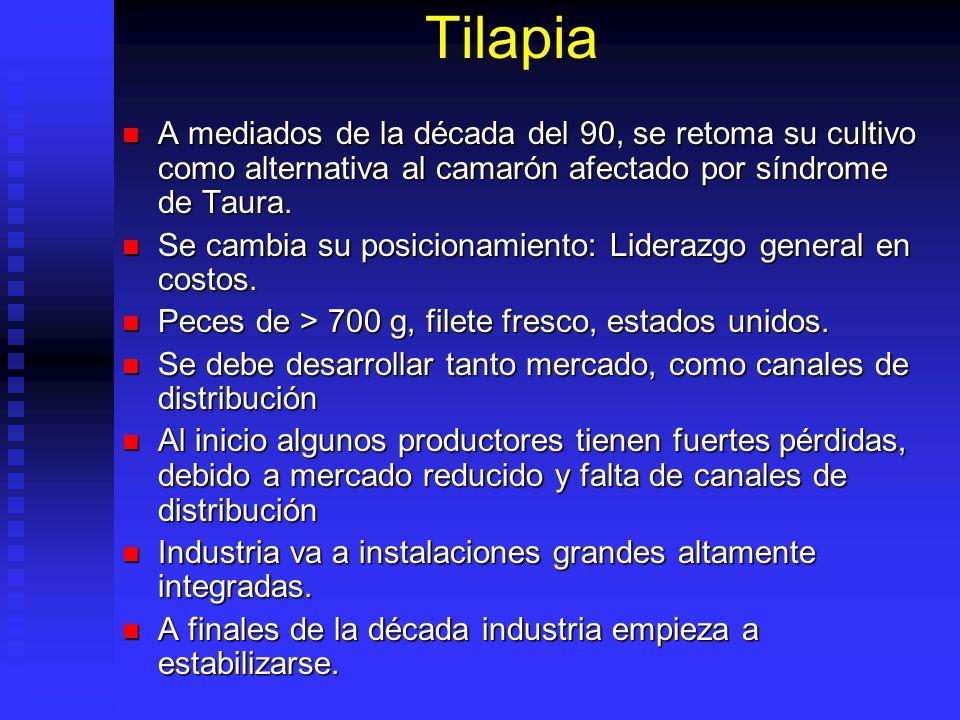 Tilapia A mediados de la década del 90, se retoma su cultivo como alternativa al camarón afectado por síndrome de Taura.