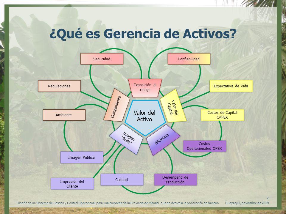 ¿Qué es Gerencia de Activos