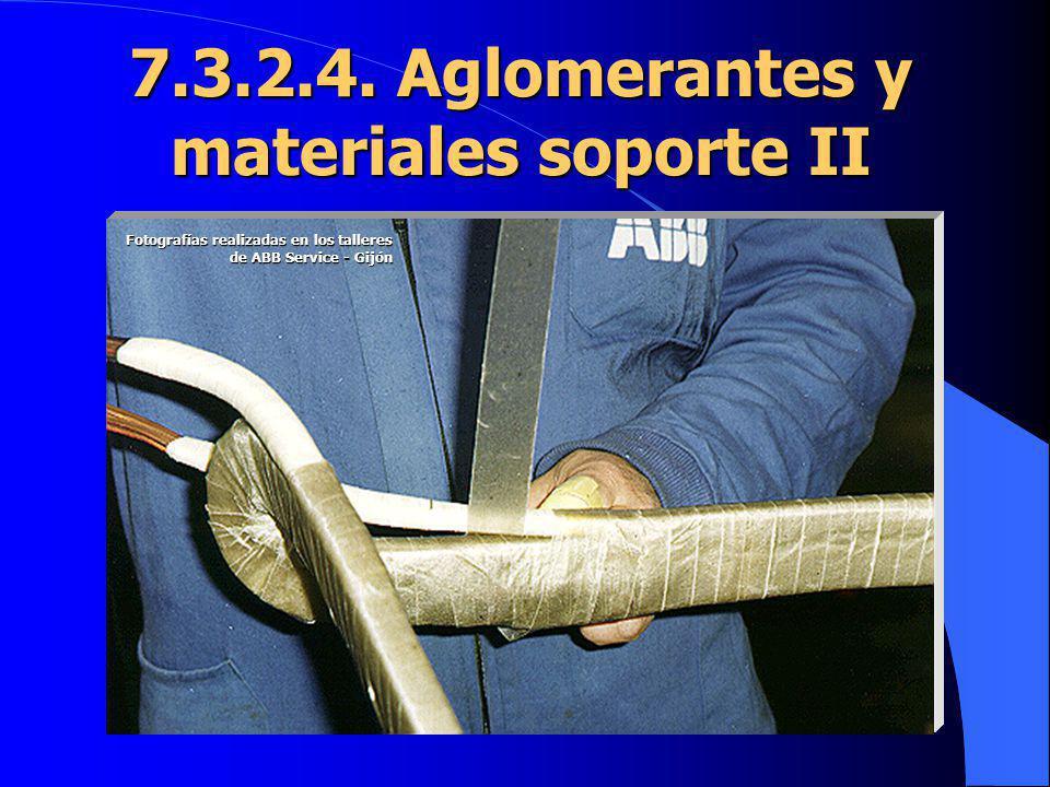 7.3.2.4. Aglomerantes y materiales soporte II
