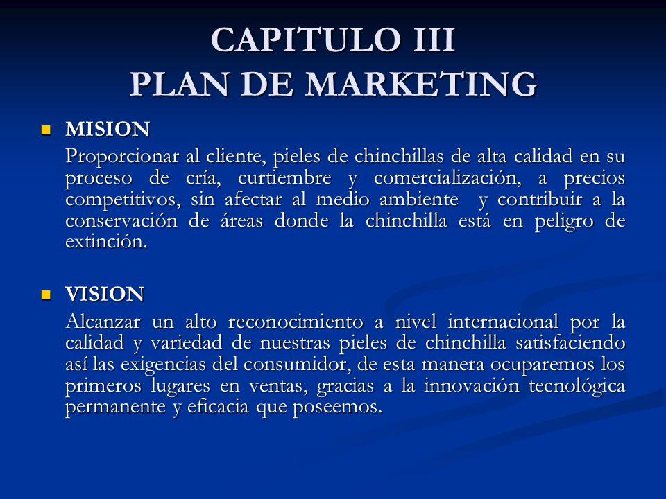 CAPITULO III PLAN DE MARKETING