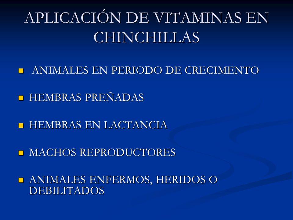 APLICACIÓN DE VITAMINAS EN CHINCHILLAS