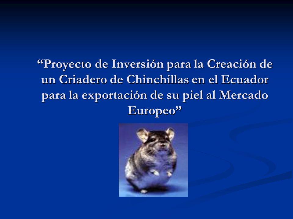 Proyecto de Inversión para la Creación de un Criadero de Chinchillas en el Ecuador para la exportación de su piel al Mercado Europeo