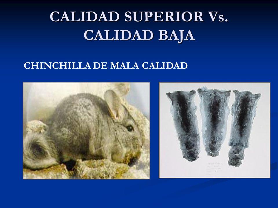 CALIDAD SUPERIOR Vs. CALIDAD BAJA