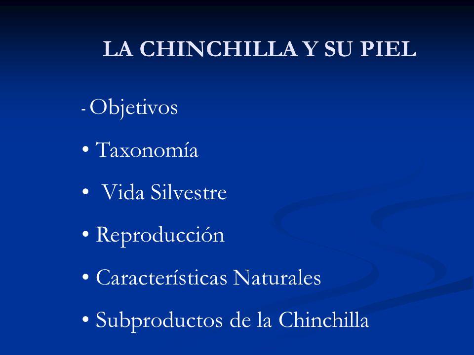 Características Naturales Subproductos de la Chinchilla