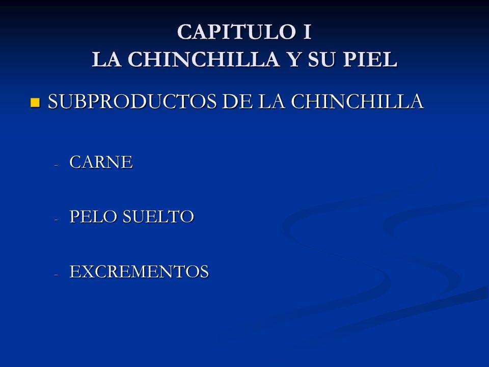 CAPITULO I LA CHINCHILLA Y SU PIEL