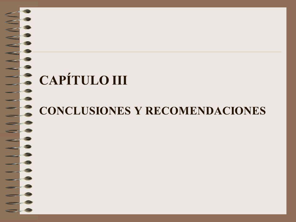CAPÍTULO III CONCLUSIONES Y RECOMENDACIONES