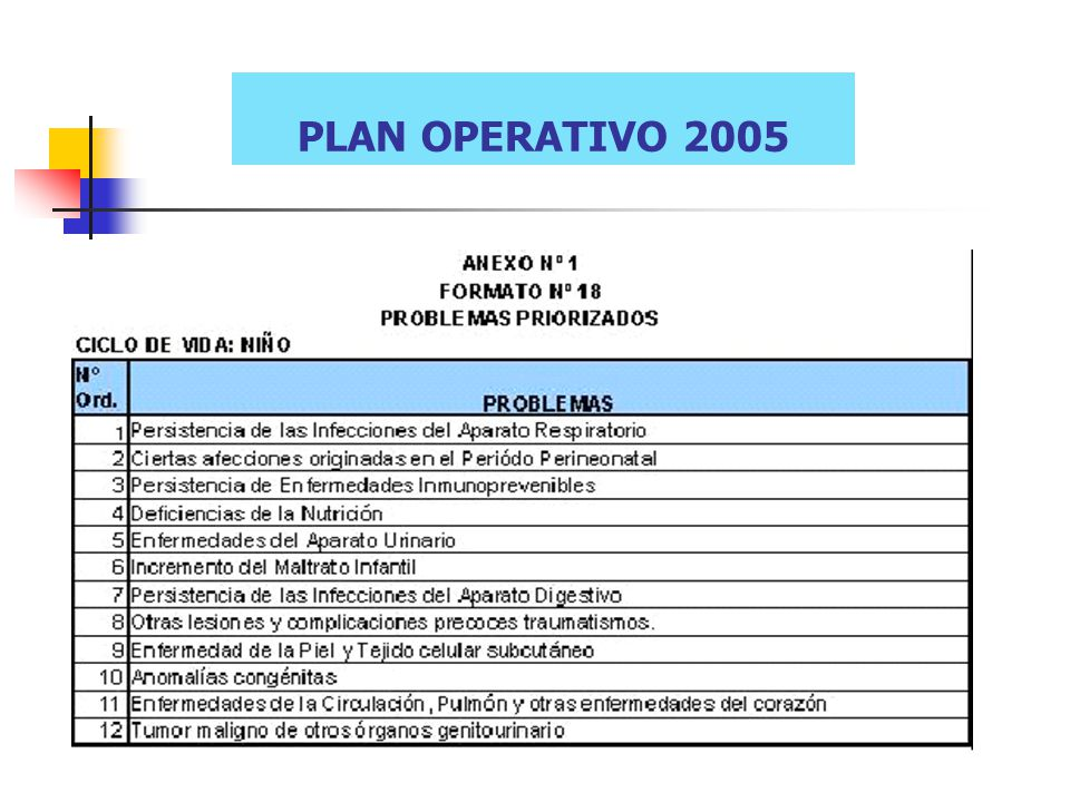 PLAN OPERATIVO 2005