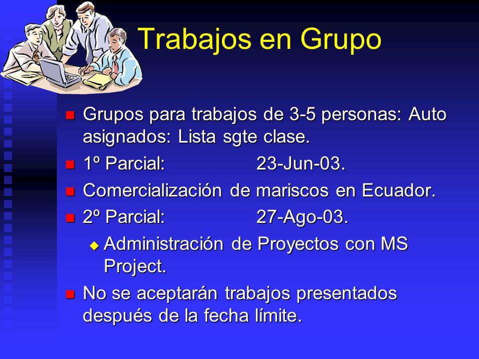 Trabajos en Grupo Grupos para trabajos de 3-5 personas: Auto asignados: Lista sgte clase. 1º Parcial: 23-Jun-03.
